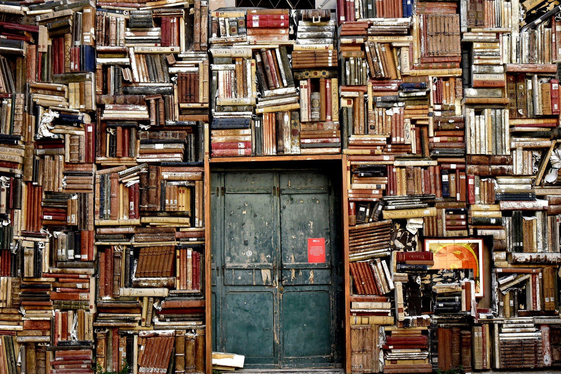 Bücherregal. ninocare @ pixabay.com